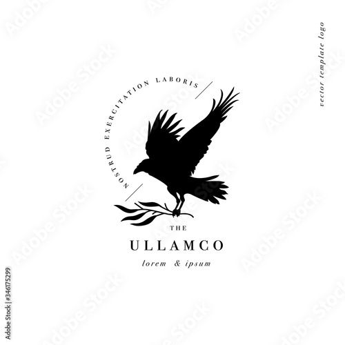 Fotografija Vector design linear template logo or emblem - crow with branch