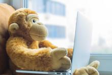 Plush Monkey With A Laptop On ...