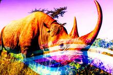 Fantasy Rhino Wallpaper In Sun...