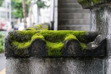 和風のブロック塀に苔...