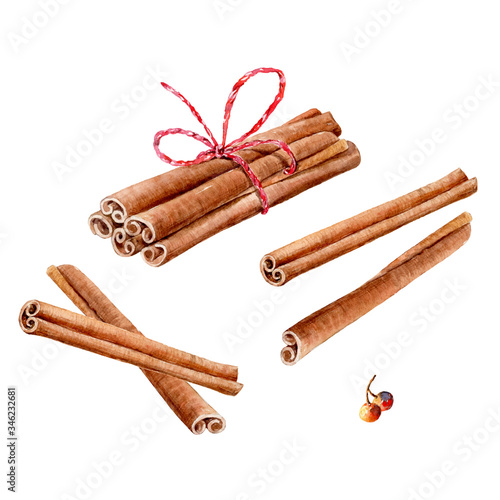 Fotomural vector Set of watercolor cinnamon sticks and tea spices anise, cloves, cardamom on white background