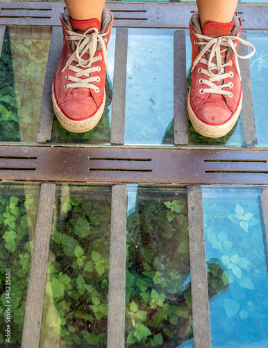 Terrarium under your feet at the entrance to the house Canvas Print