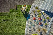 Landscaping Contractor Install...