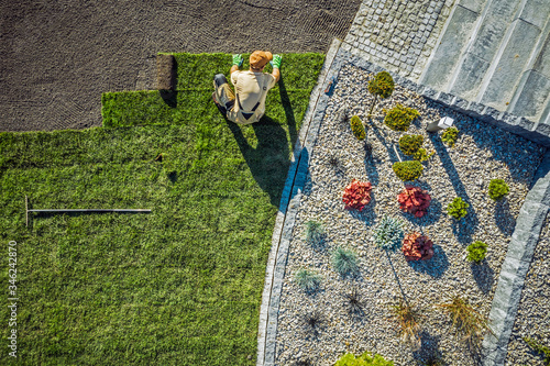 Landscaping Contractor Installing New Turf In Backyard. Fototapet