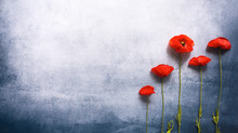 Blue Vintage Textured Background And Red Poppy Flowers.