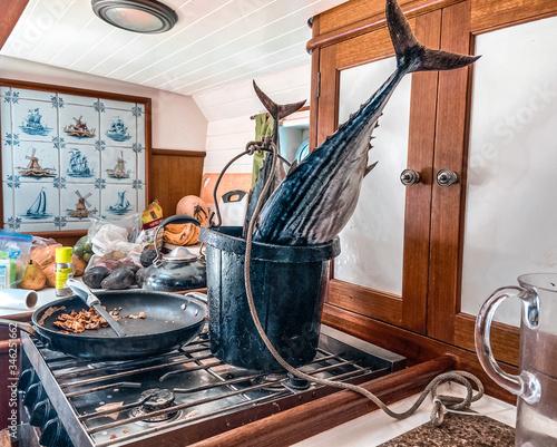 Fotografija Two big tunas bonita in the bucket on the boat's kitchen