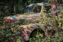 Old Truck In The Weeds