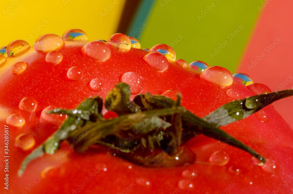 Fototapeta krople,woda,makro,pomidor,czerwony,kolorowy,mokry,zielony,rosa,zbliżenie,tło,warzywo,owoc