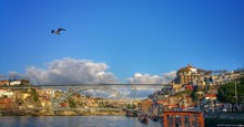 Bird Flying Over River In City Against Blue Sky