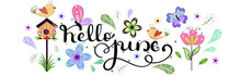 Hello June. JUNE Month Vector With Flowers, Birdhouse, Butterflies And Leaves. Decoration Floral. Illustration Month June