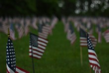 American Flags At Indiantown Gap National Cemetery