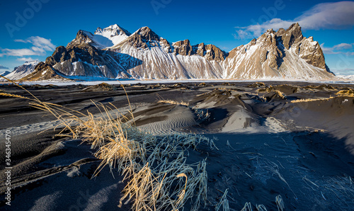 Fotografija Dried, windswept grasses hang on to black sand hills in front of Vestrahorn