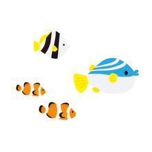 海底の珊瑚と魚たち ...