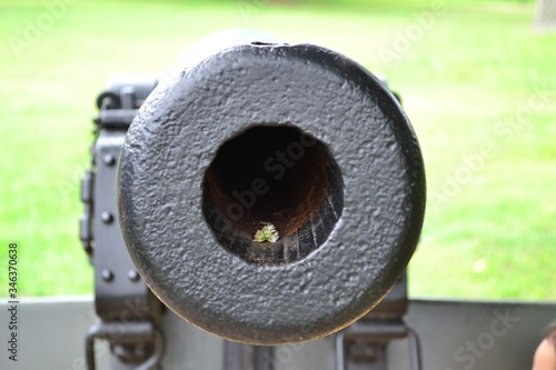 Foto Close-up Of Cannon On Field