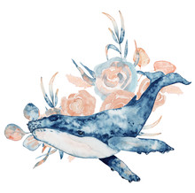 Watercolor Illustration Of Whale In Blue Color With Floral Composition Isolated On White Background