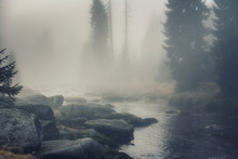 Izera River In Foggy Landscape...