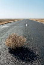 Tumbleweed On Road In Desert
