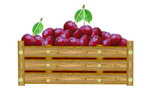 Cherries In Box Isolated On Wh...