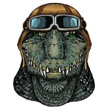Alligator. Crocodilia. Portrait Of African Agressive Animal. Vintage Aviator Helmet With Googles.