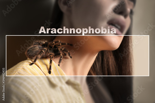 Closeup view of woman with tarantula, focus on spider Canvas Print