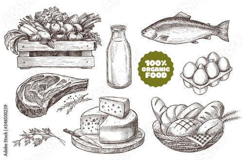 Obraz Set of illustrations of farm products. Natural products: meat, cheese, bread, milk, eggs, fish, vegetables. Vintage design. - fototapety do salonu