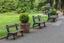 Botanic Garden Of Nantes In Lo...