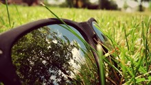 Reflection Of Trees On Sunglas...