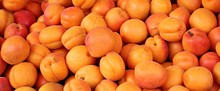 Close Up Of A Pile Of Apricots