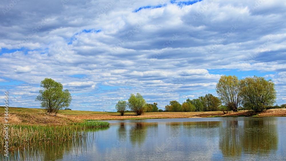 Fototapeta Staw w okolicy odry, błękitne zachmurzone niebo, drzewa na polanie