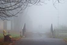 Morning Fog In The Autumn Park...