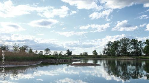 Fototapeta Rzeka odra, drzewa, brzeg rzeki, linia brzegowa, odbicie obraz