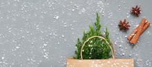 A Small Christmas Tree As Gift...