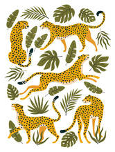 Vector Set Of Leopards Or Chee...