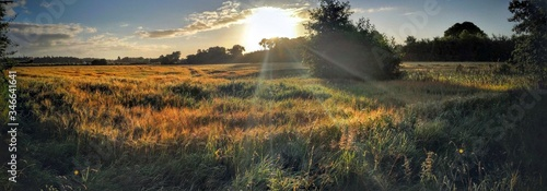 Scenic View Of Field Against Sky During Sunrise Canvas Print
