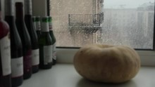On The Windowsill In Defocus A...