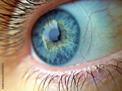 Valokuva Extreme Close Up Of Human Eye