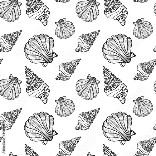 Canvas-taulu Outline scallop on white backdrop