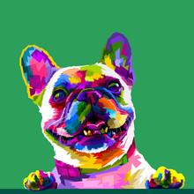 French Bulldog In Pop Art Colo...