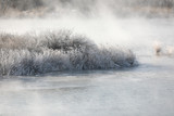 Trees and reeds are covered with snow, and the river has water mist. Soyang River, Chuncheon City, Korea - 346762299