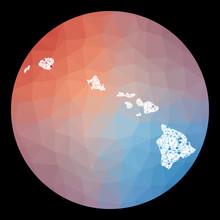 Vector Network Hawaii Map. Map...