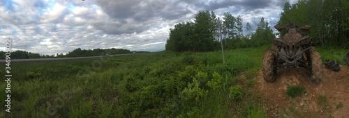 Fototapety, obrazy: Trees On Field Against Sky