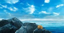 Seascape, Blue Sky, Sea Waves,...
