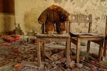 Oso De Pripyat