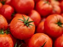 Morocco, Heap Of Fresh Ripe Tomatoes