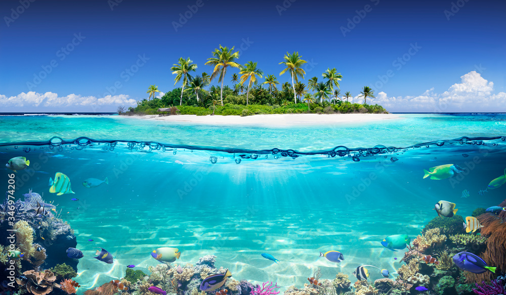 Fototapeta Tropical Island And Coral Reef - Split View With Waterline