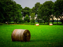 Rolled Up Hay Bale On Grassy Field By Trees At Farm