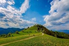 Scenic View Of Green Landscape...