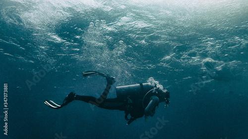 Fotografia, Obraz Person Scuba Diving Undersea