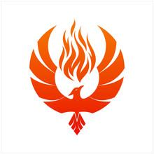 Flying Phoenix Fire Bird Abstract Logo Design Vector Template. Dove Eagle Logotype Concept Icon