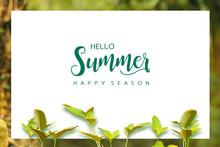여름광고판